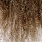 Comment réparer des cheveux très abîmés?