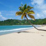 Madagascar : des vacances hautes en couleur